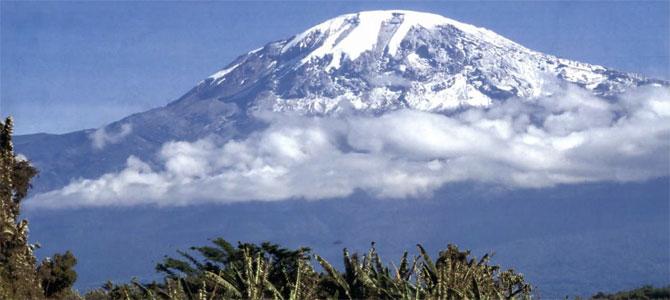 kilimanjaro lieke van lexmond