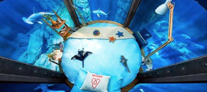 airbnb haaien overnachten
