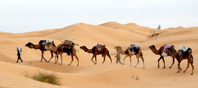 Groepsreizen Tunesie