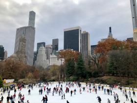 New York en Washington kerstreizen