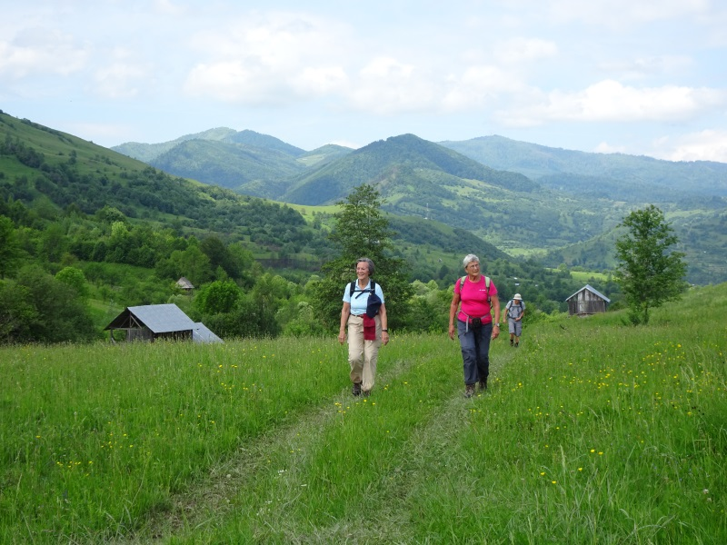 Roemenië   Single wandelreis Roemenië