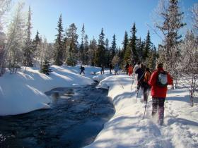 Winter groepsreizen Zweden