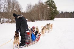 Winterse groepsreizen Zweden